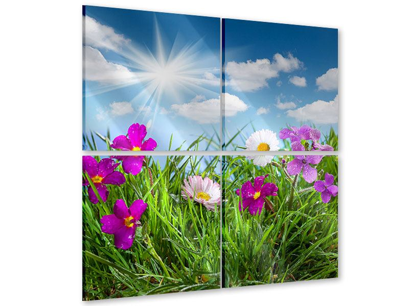 Acrylglasbild 4-teilig Blumenwiese