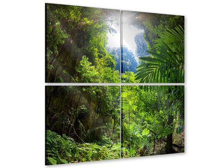 Acrylglasbild 4-teilig Lichtung im Dschungel