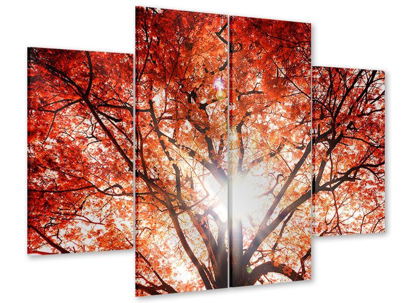 Acrylglasbild 4-teilig Herbstlicht