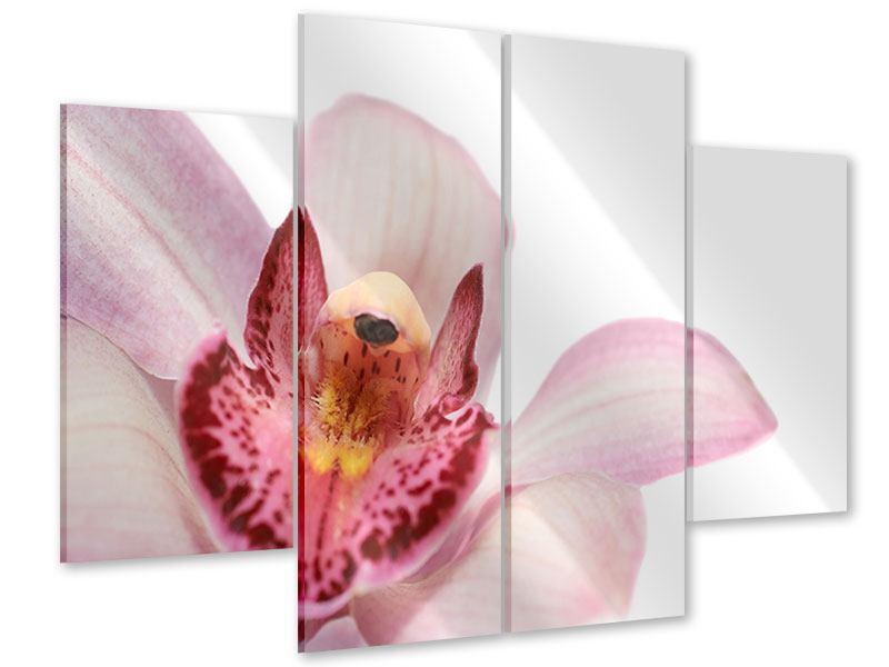Acrylglasbild 4-teilig Orchideenblüte XXL