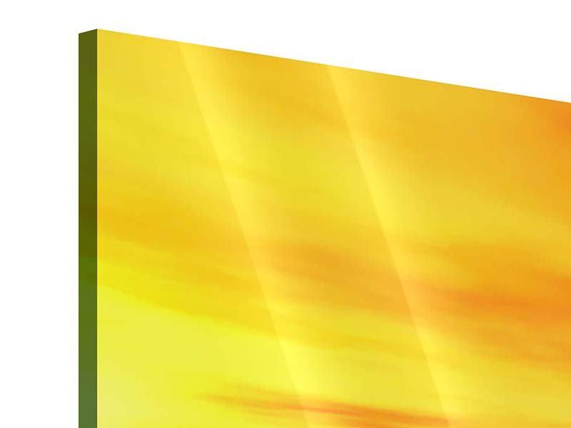 Acrylglasbild 4-teilig Ab auf die Insel