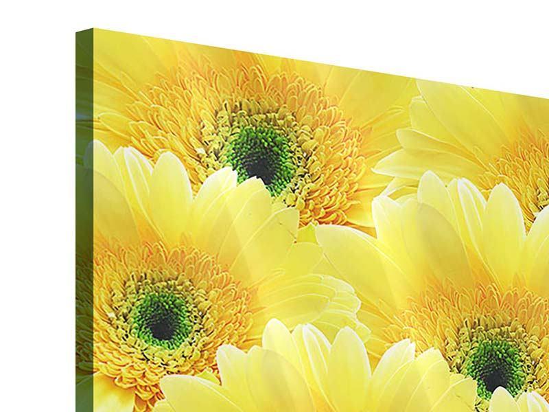 Acrylglasbild 4-teilig Flower Power Blumen