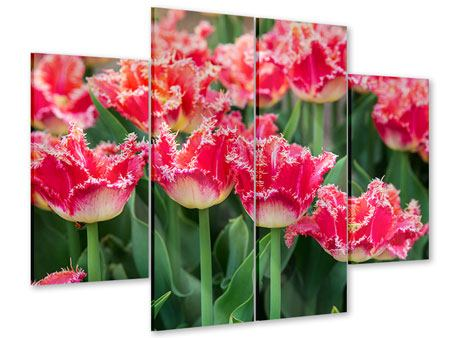 Acrylglasbild 4-teilig Die Tulpenwiese