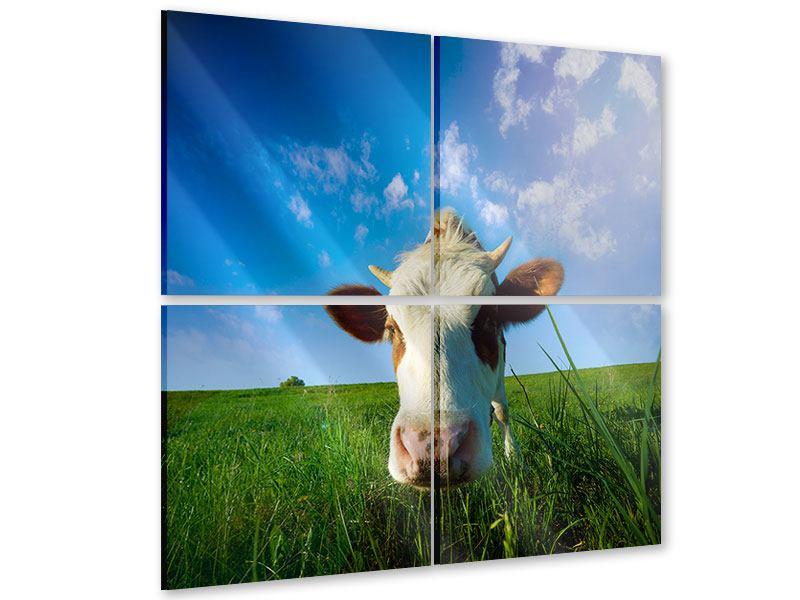 Acrylglasbild 4-teilig Die Kuh