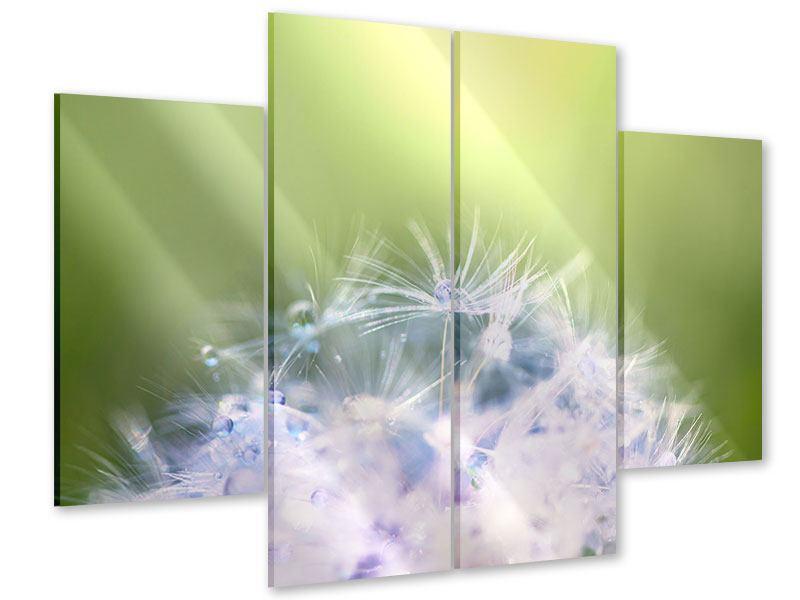 Acrylglasbild 4-teilig Pusteblume XL im Morgentau