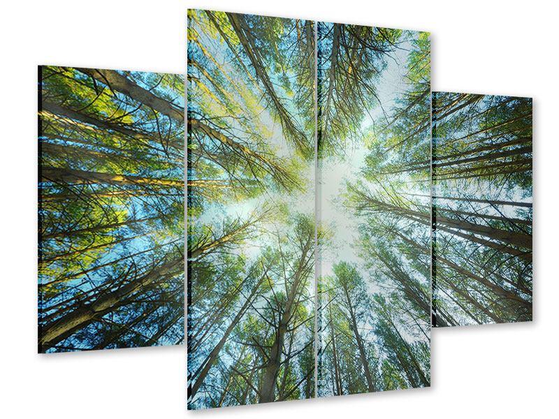 Acrylglasbild 4-teilig Kiefernwald