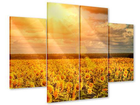 Acrylglasbild 4-teilig Goldenes Licht für Sonnenblumen