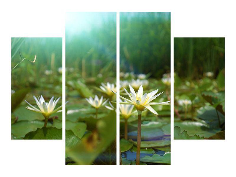 Acrylglasbild 4-teilig Im Seerosenteich