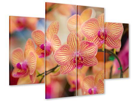 Acrylglasbild 4-teilig Exotische Orchideen