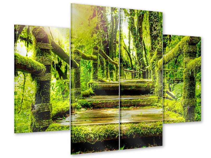 Acrylglasbild 4-teilig Moos