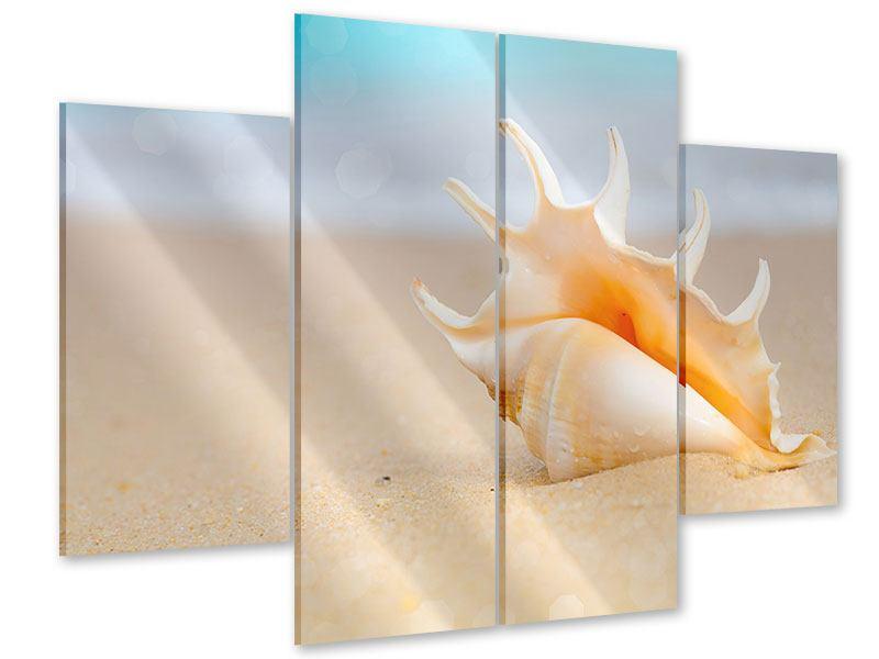 Acrylglasbild 4-teilig Die Muschel am Strand