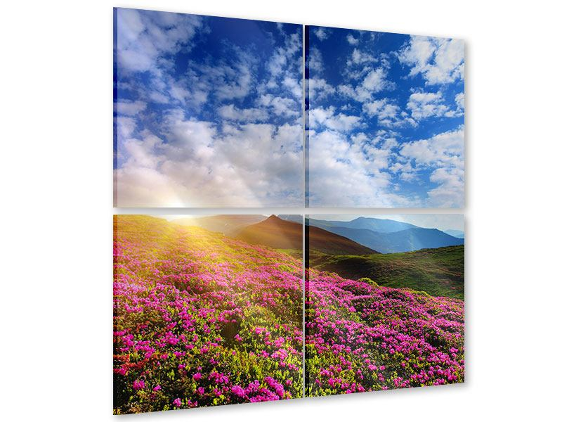Acrylglasbild 4-teilig Blumige Berglandschaft