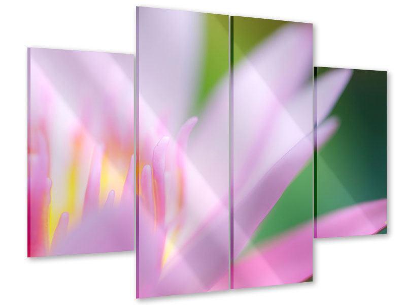 Acrylglasbild 4-teilig XXL-Lilie