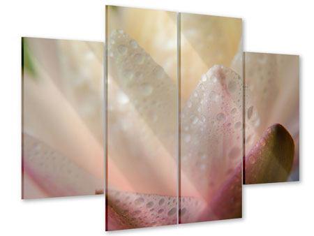 Acrylglasbild 4-teilig Close Up Seerose