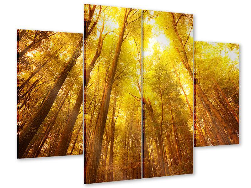 Acrylglasbild 4-teilig Herbstwald