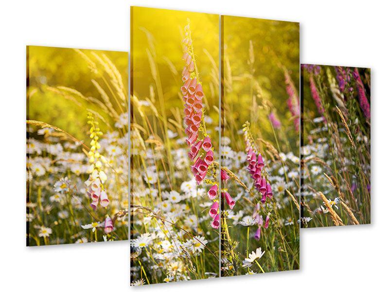 Acrylglasbild 4-teilig Sommerliche Blumenwiese