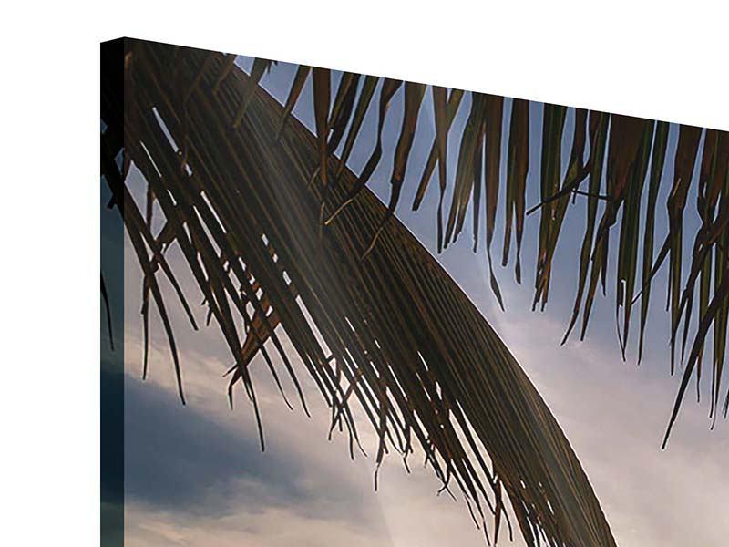 Acrylglasbild 4-teilig Strandpalme