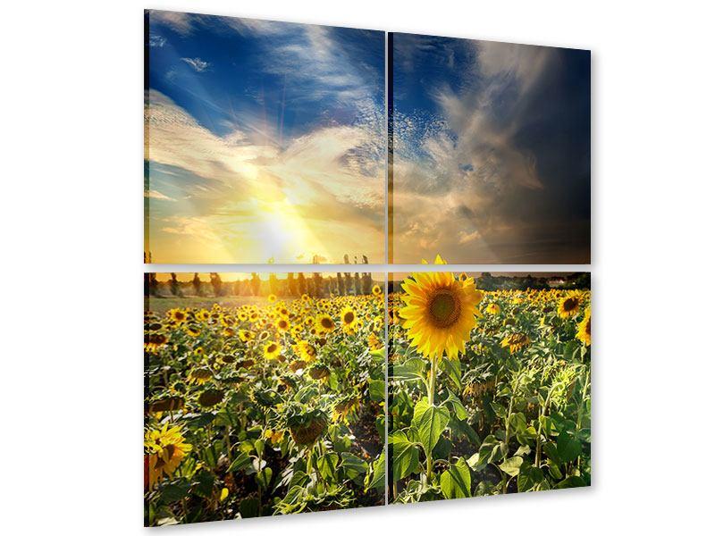 Acrylglasbild 4-teilig Sunny Flowers