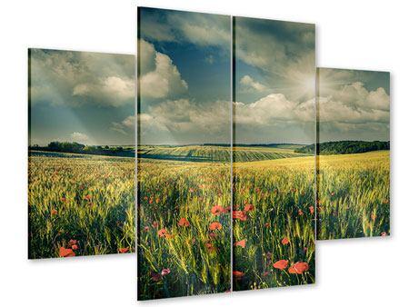 Acrylglasbild 4-teilig Der Mohn im Weizenfeld