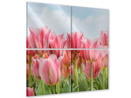 Acrylglasbild 4-teilig Zarte Tulpen