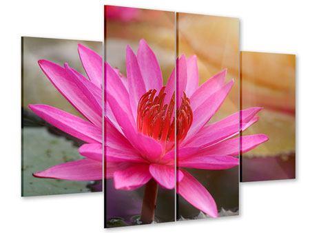 Acrylglasbild 4-teilig Sonnige Seerose