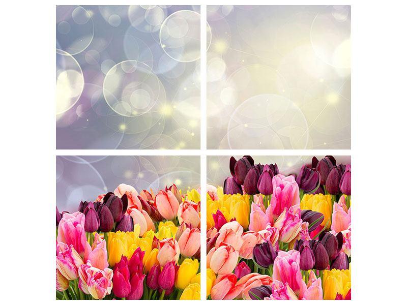 Acrylglasbild 4-teilig Buntes Tulpenbeet im Lichtspiel