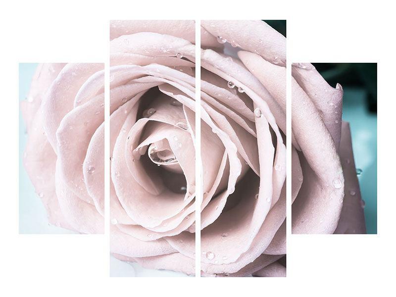 Acrylglasbild 4-teilig Pastellrose