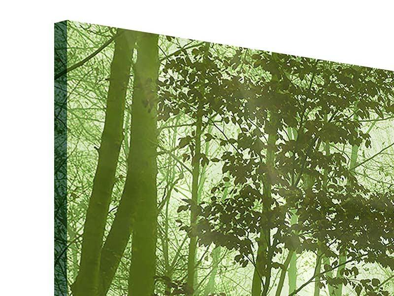Acrylglasbild 4-teilig Nibelungenwald