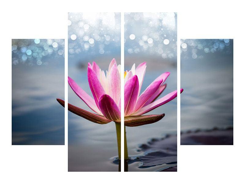 Acrylglasbild 4-teilig Lotus im Morgentau