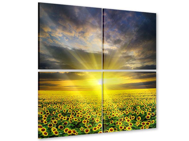 Acrylglasbild 4-teilig Abenddämmerung bei den Sonnenblumen