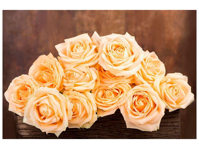 Acrylglasbild Die Rosenzeit