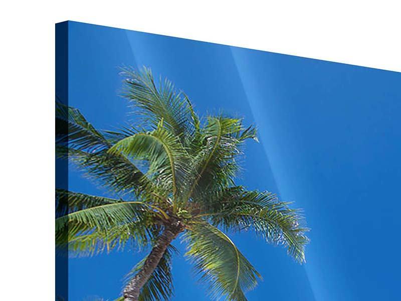Acrylglasbild Sommer Sonne Strand