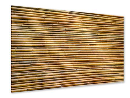 Acrylglasbild Bambus