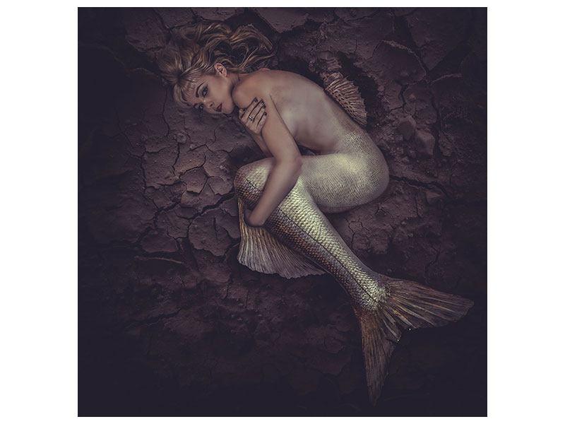 Acrylglasbild Meerjungfrau