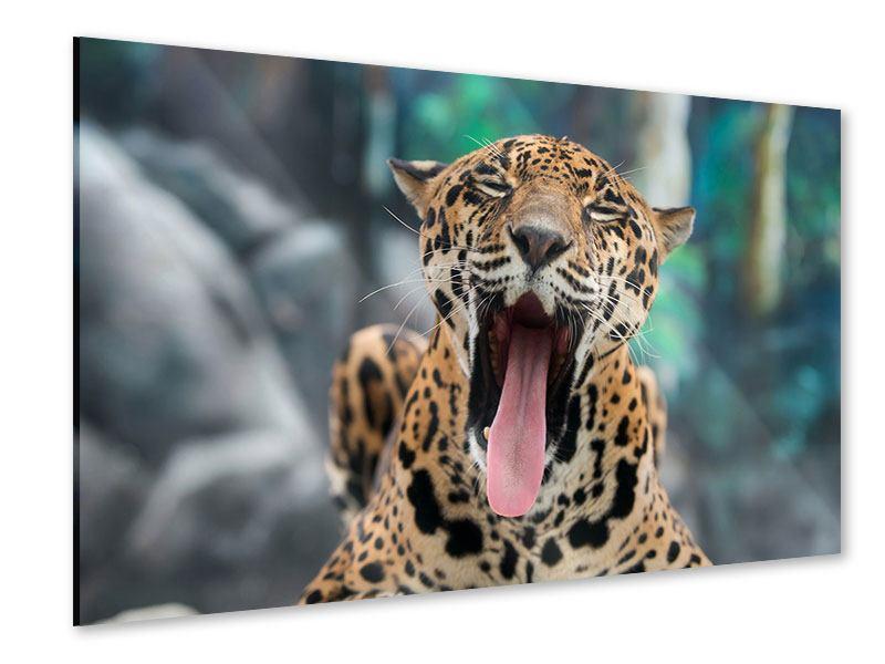 Acrylglasbild Leopardenkopf