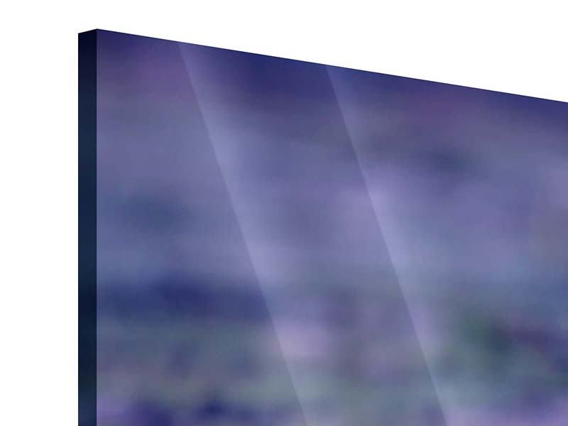 Acrylglasbild Lotus Duo im Sonnenaufgang