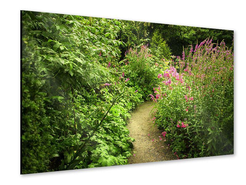 Acrylglasbild Gartenweg