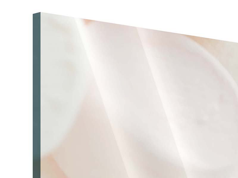 Acrylglasbild Marshmallow
