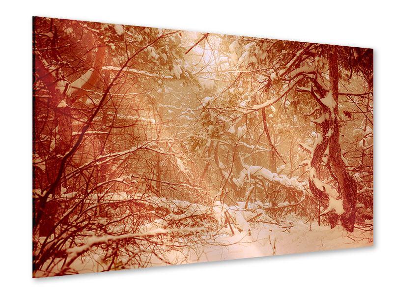 Acrylglasbild Schneewald