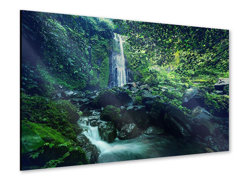 Acrylglasbild Natur