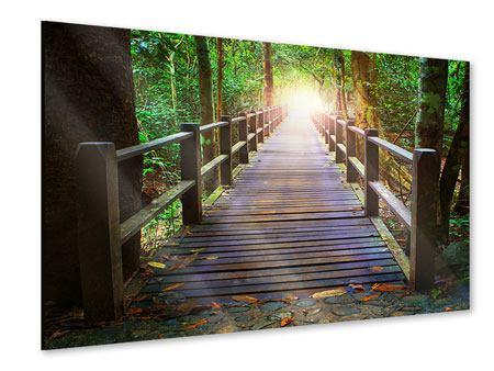 Acrylglasbild Die Brücke im Wald
