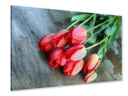 Acrylglasbild Der rote Tulpenstrauss