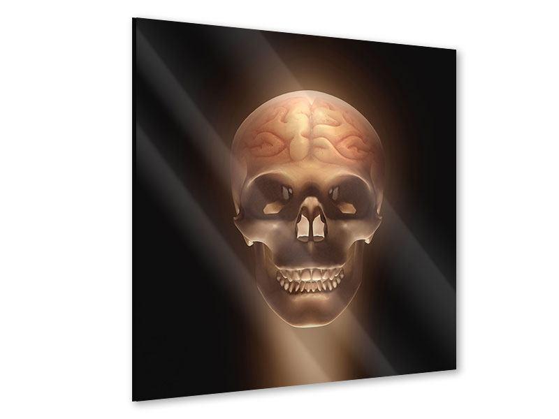 Acrylglasbild Schädel