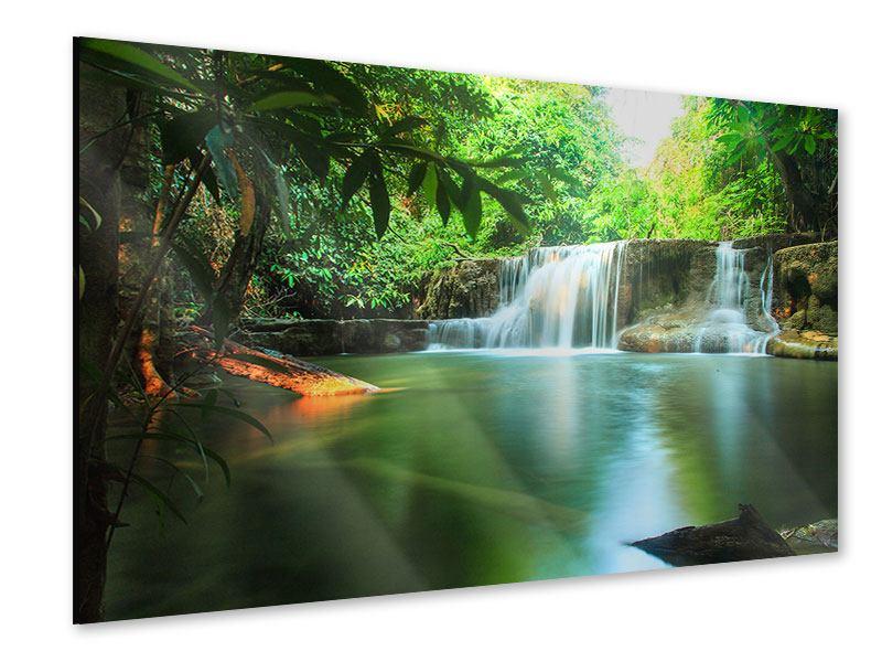 Acrylglasbild Element Wasser