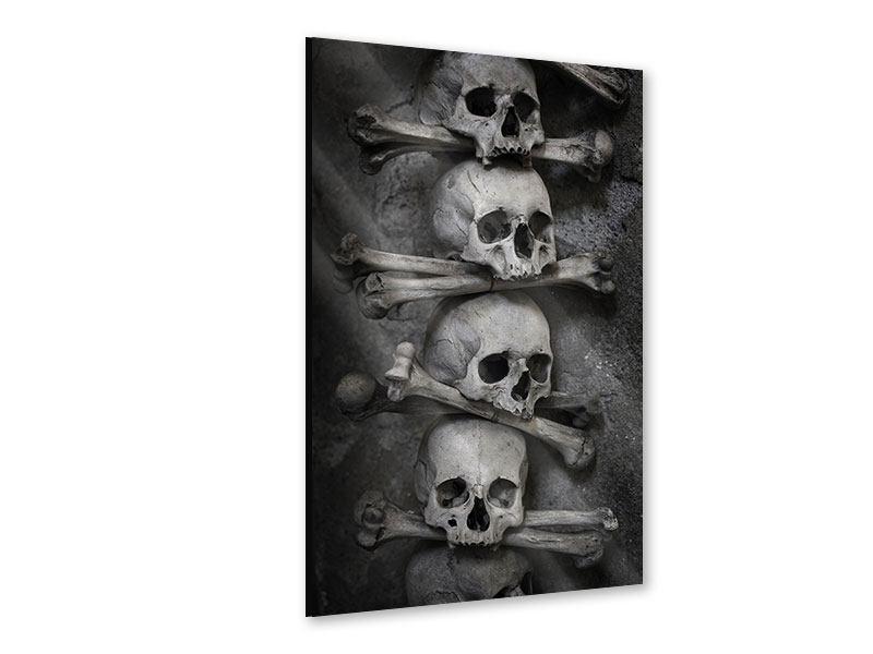 Acrylglasbild Totenköpfe