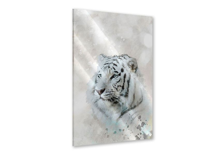 Acrylglasbild Tiger-Gemälde