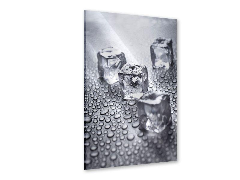 Acrylglasbild Frischekick