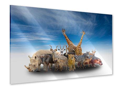 Acrylglasbild Der Zoo