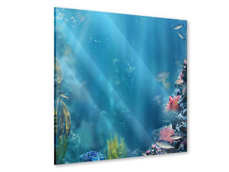 Acrylglasbild Unter Wasser