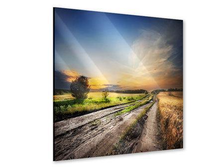 Acrylglasbild Sonnenaufgang am Feld